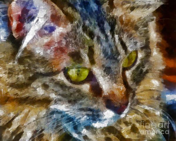 Kittens Poster featuring the digital art Fletcher Kitty by Marilyn Sholin