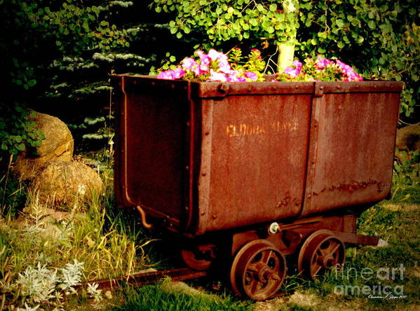 Rustic Poster featuring the photograph Fleurs In Rustic Ore Car by Christine S Zipps