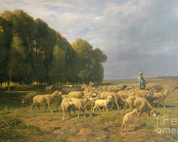 Flock Poster featuring the painting Flock Of Sheep In A Landscape by Charles Emile Jacque