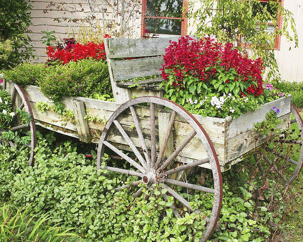 Wagon Poster featuring the photograph Flower Wagon by Margie Wildblood