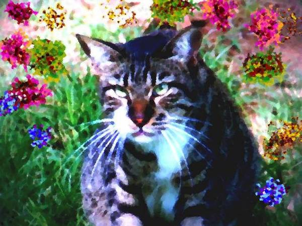 Cat Grey Attention Grass Flowers Nature Animals View Poster featuring the digital art Flowers And Cat by Dr Loifer Vladimir