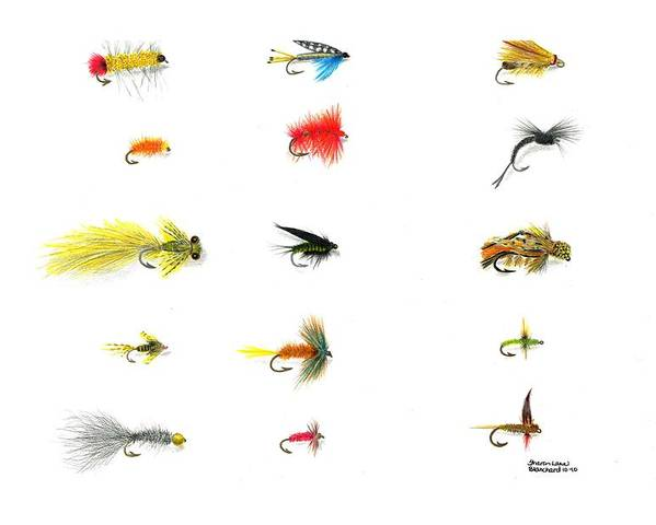 Fly Fishing Poster featuring the drawing Fly Fishing Nymphs Wet And Dry Flies by Sharon Blanchard