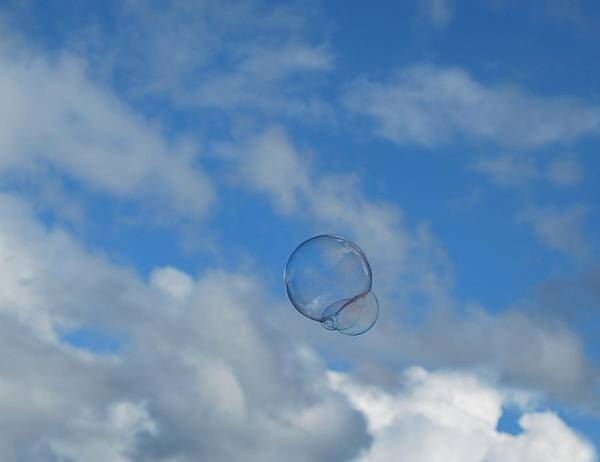 Bubbles Poster featuring the photograph Flying Free by Marilynne Bull