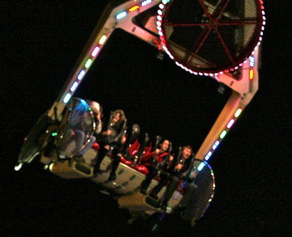 Winter Wonderland Poster featuring the photograph Flying Without Wings by Steve Swindells