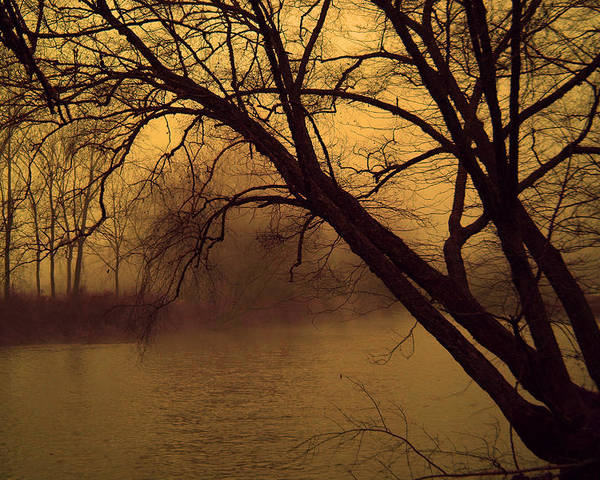 Landscape Poster featuring the photograph Fog In The Morning. by Itai Minovitz