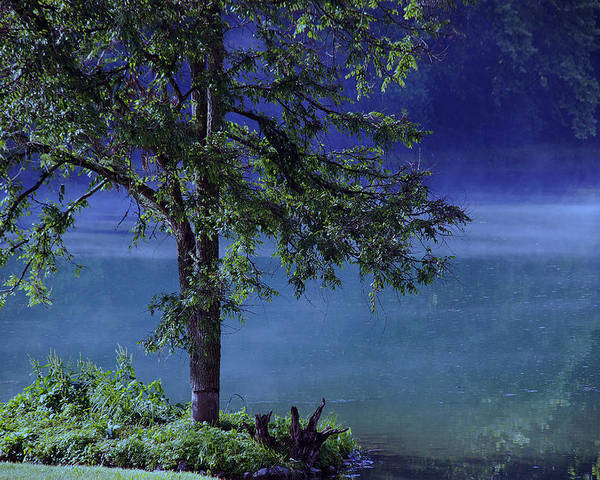 Landscape Poster featuring the photograph Fog Over The Pond by Susanne Van Hulst