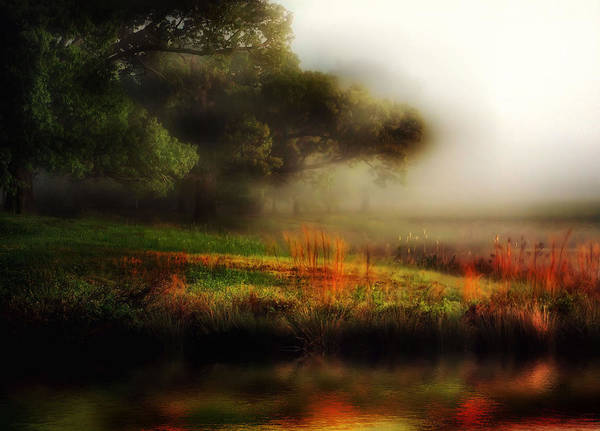 Fog Poster featuring the photograph Foggy Morning Mill Pond by John Warren