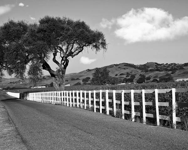 Highway Poster featuring the photograph Follow The Fence by Patricia Stalter