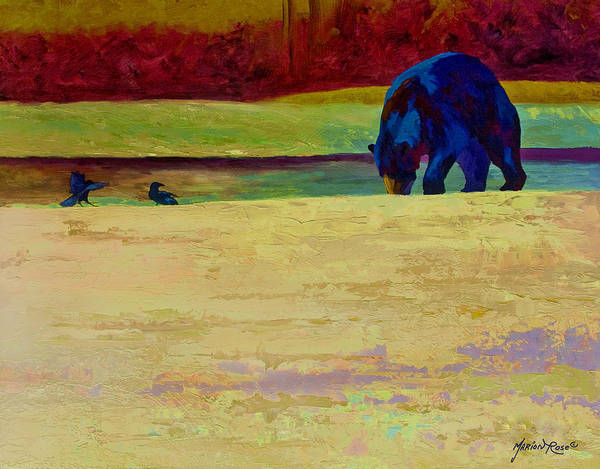 Bear Poster featuring the painting Foraging At Neets Bay - Black Bear by Marion Rose