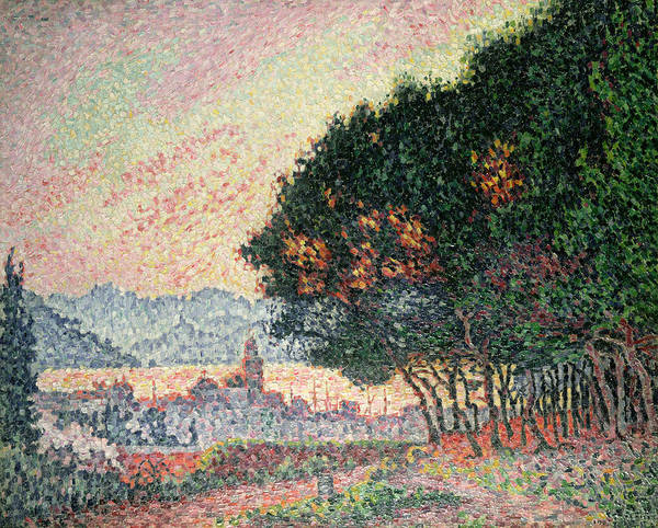 Pointillism Poster featuring the painting Forest Near St Tropez by Paul Signac
