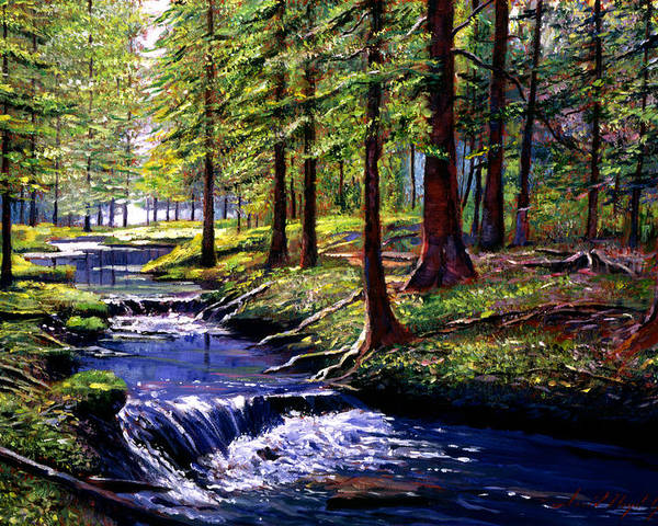 Forests Poster featuring the painting Forest Waters by David Lloyd Glover