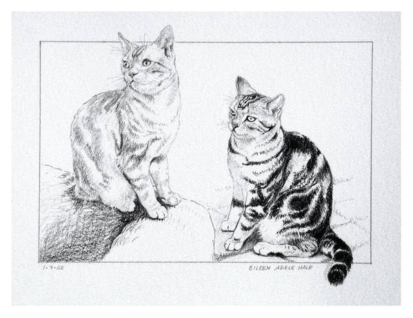 Portrait Poster featuring the drawing Fred and Ginger by Eileen Hale