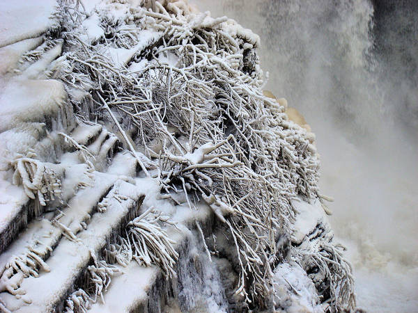 Poster featuring the photograph Freezing Falls by Tingy Wende