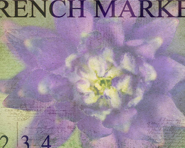 Purple Poster featuring the photograph French Market Series H by Rebecca Cozart