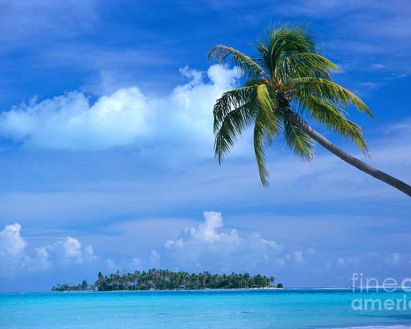 Blue Poster featuring the photograph French Polynesia, Bora Bo by Himani - Printscapes