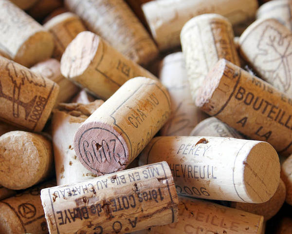 Wine Corks Poster featuring the photograph French Wine Corks by Georgia Fowler