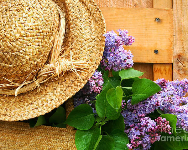 Barn Poster featuring the digital art Freshly Picked Lilacs by Sandra Cunningham