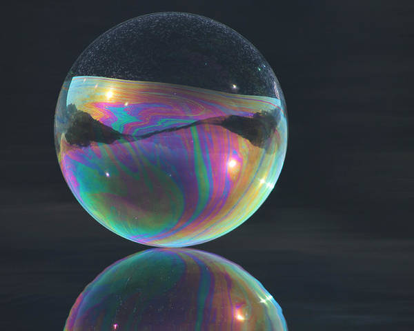Bubble Poster featuring the photograph Full Bubble by Cathie Douglas