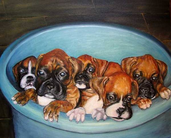Oil Poster featuring the painting Funny Puppies Orginal Oil Painting by Natalja Picugina