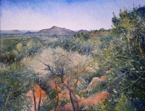 Botswana Landscapes Poster featuring the painting Gaberone Botswana 2008 by Enver Larney