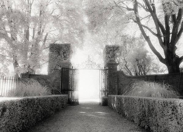 Garden Poster featuring the photograph Garden Gate by Michael Hudson