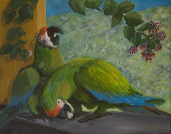 Birds Poster featuring the painting Garden Parrots by Anita Wann