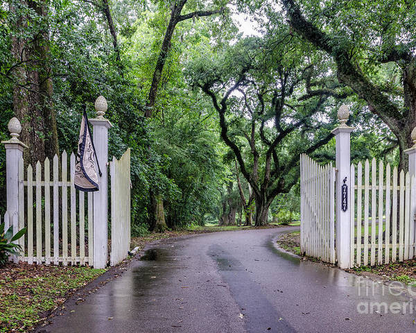 Gate Poster featuring the photograph Gates To Myrtle's Plantation In La by Kathleen K Parker