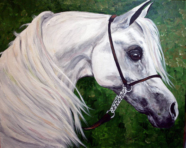 Horse Poster featuring the painting Gentle Arabian by BJ Redmond