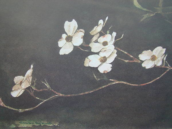 Charles Roy Smith Poster featuring the painting Georgia Dogwood by Charles Roy Smith
