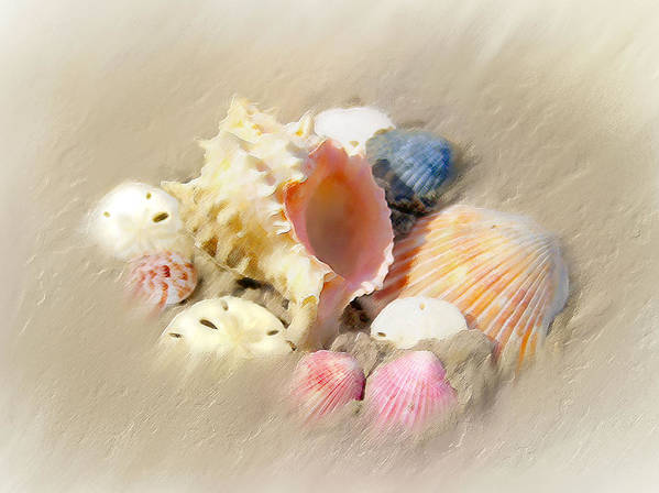 Beach Art Poster featuring the painting Gifts From The Sea by Carolyn Staut