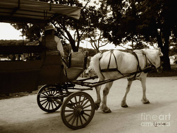 Driver Poster featuring the photograph Going Home by RC DeWinter