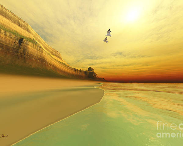 Seagull Poster featuring the painting Gold Coast by Corey Ford