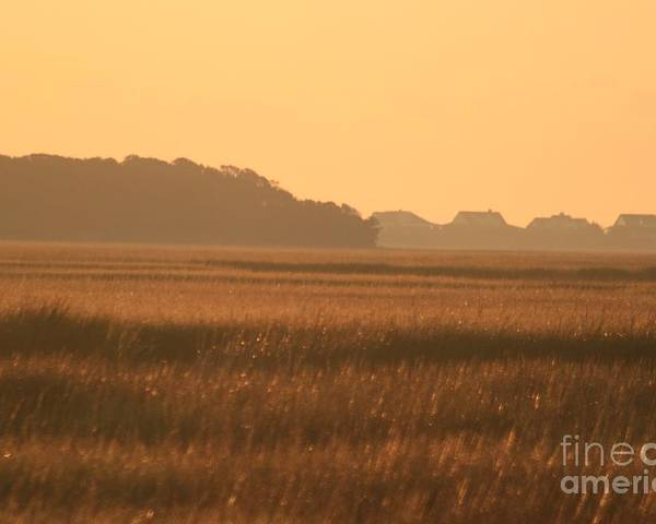 Marsh Poster featuring the photograph Golden Marshes by Nadine Rippelmeyer