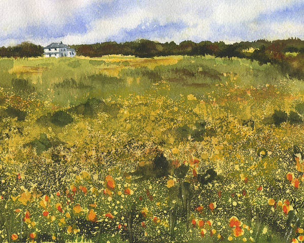 Flowers Poster featuring the painting Golden Meadow by Marsha Elliott