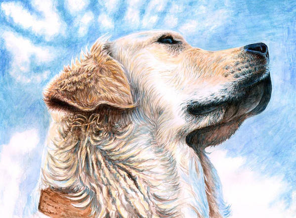 Dog Poster featuring the painting Golden Retriever by Nicole Zeug