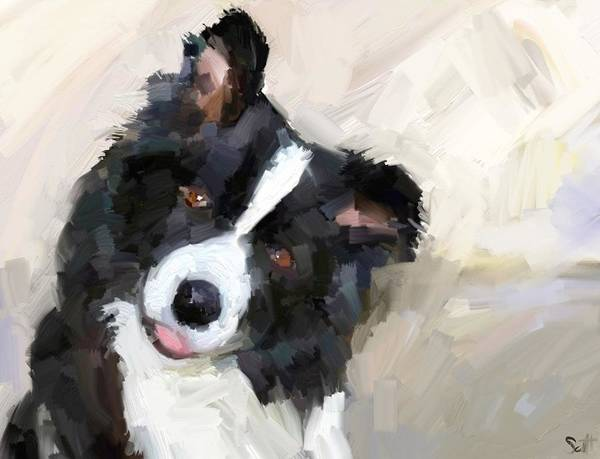 Border Collie Dog Sheepdog Poster featuring the digital art Got any sheep? by Scott Waters