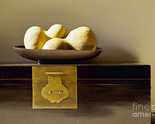 Beige Poster featuring the photograph Gourds Still Life I by Kyle Rothenborg - Printscapes