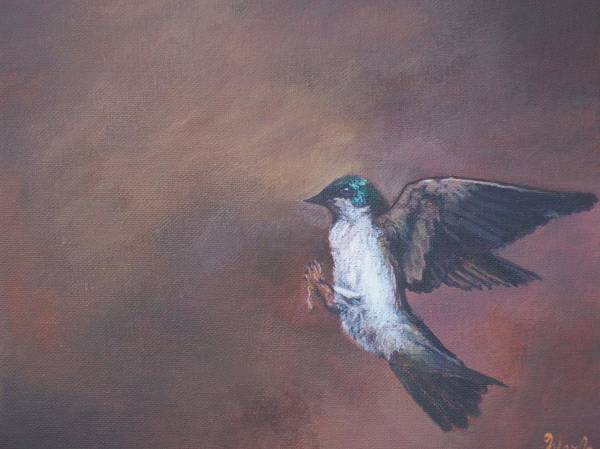 Tree Swallow Poster featuring the painting Grace by Bill Werle