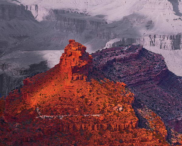 Arizona Poster featuring the photograph Grand Canyon In Red And Blue by Viktor Savchenko