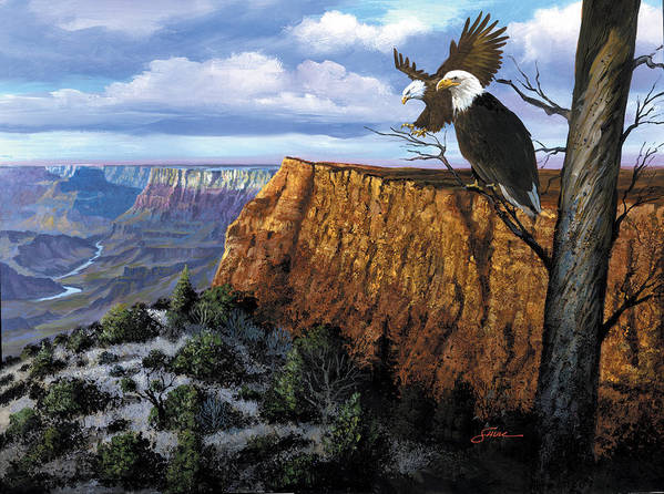 Grand Canyon Poster featuring the painting Grand Canyon Lookout by Harold Shull