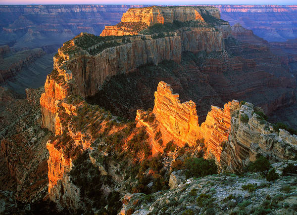 Usa Poster featuring the photograph Grand Canyon North Rim by Johan Elzenga