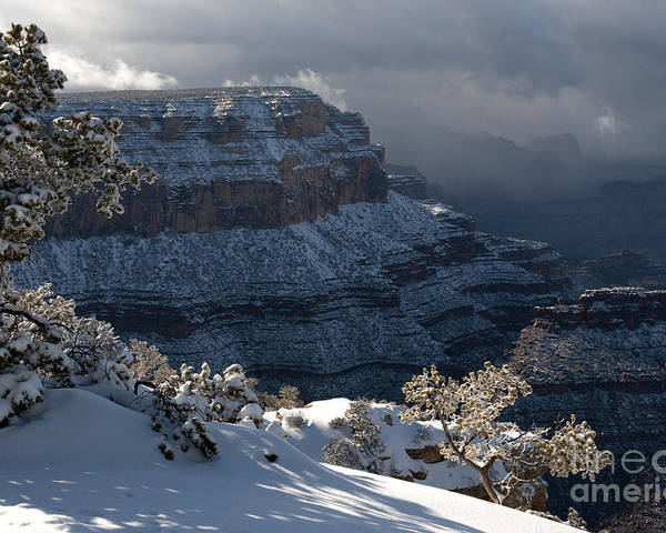 Grand Canyon Poster featuring the photograph Grand Canyon Storm by Sandra Bronstein
