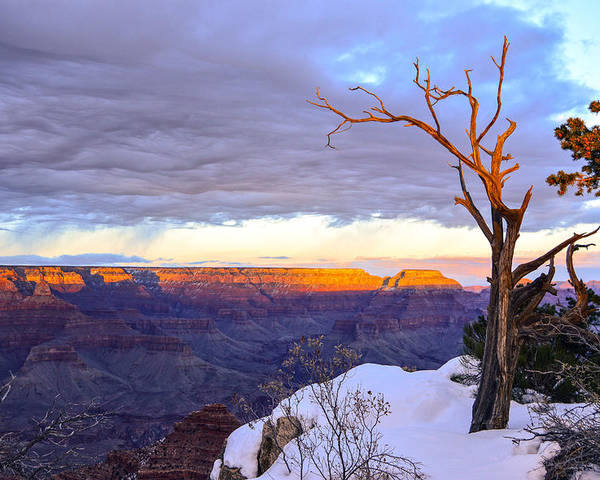 Grand Poster featuring the photograph Grand Canyon Sunset by Mauverneen Blevins