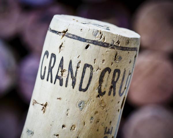 Grand Cru Poster featuring the photograph Grand Cru by Frank Tschakert