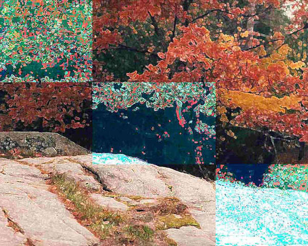 Landscape Poster featuring the photograph Granite Outcrop And Fall Leaves Aep3 by Lyle Crump