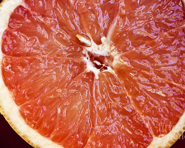 Center Poster featuring the photograph Grapefruit Half by Ray Laskowitz - Printscapes