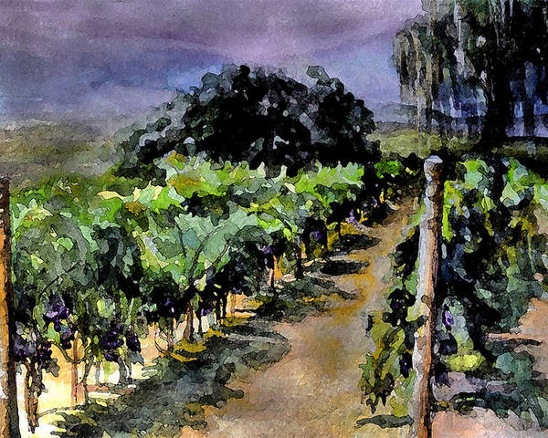 Vineyard Poster featuring the painting Grapes Of Niagara by Mary Sonya Conti