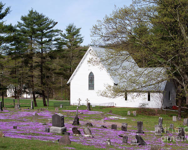 Church Poster featuring the photograph Graveyard Phlox Country Church by John Stephens