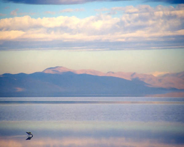 Lake Poster featuring the photograph Great Salt Lake Pastel Morning by Steve Ohlsen