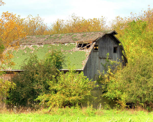 Illinois Poster featuring the photograph Green Barn by Deborah Smolinske